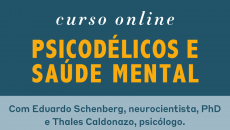 Psicodélicos e Saúde Mental